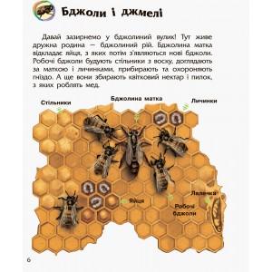 Енциклопедія дошкільника (нова) : Комахи Каспарова