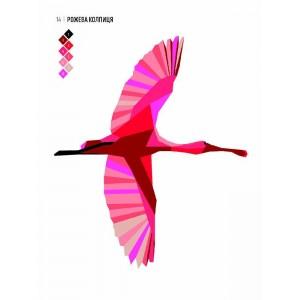 Зоометрія. Дивовижні птахи _