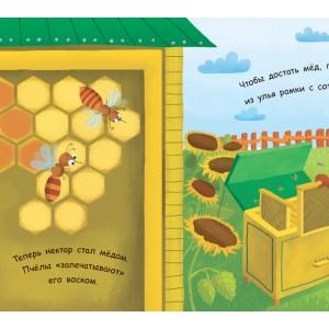 Моя перша енциклопедія: Как получается мёд? Булгакова