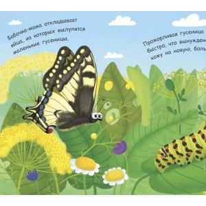 Моя перша енциклопедія: Как рождается бабочка? Булгакова