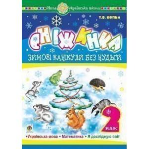 Зимові канікули без нудьги Сніжинка 2 клас НУШ