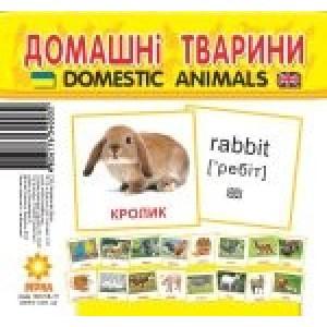 Міні-картки Домашні тварини
