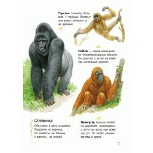 Енциклопедія дошкільника (нова): Животные Каспарова